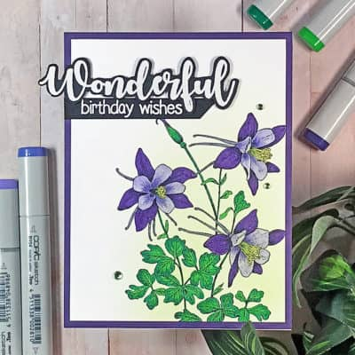 Wonderful Birthday Wishes & Copic Coloring